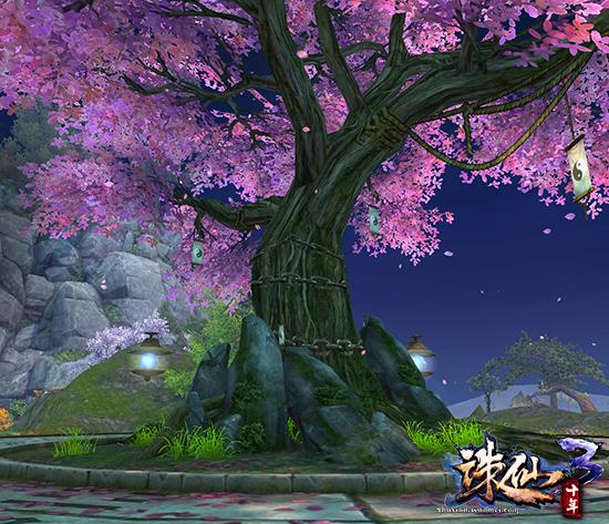 图片: 图1:相思树下道相思.jpg